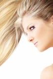 Health of hair stock photos