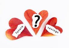 Health insurance, savings for the future Royalty Free Stock Photo