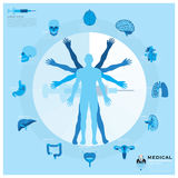 Health And Medical Infographic Royalty Free Stock Photos