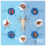 Health And Medical Infographic Infocharts Science Background Stock Photos
