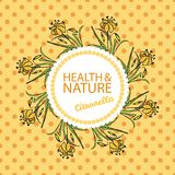 Health and Nature Collection. Citronella Royalty Free Stock Image