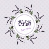 Health and Nature Collection. Lavender. Health and Nature Collection. Badge template with a herb on spotted seamless background. Lavender - Lavandula royalty free illustration