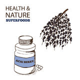 Health and Nature Superfoods Collection Stock Images