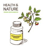 Health and Nature Supplements Collection Stock Photography