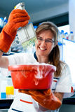 Health and safety in modern lab Stock Photography