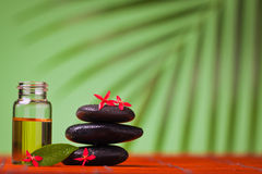 Health spa & massage still life Royalty Free Stock Photo