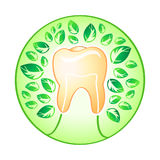 Health tooth Stock Photography