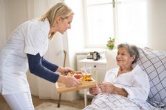 A health visitor bringing breakfast to a sick senior woman lying in bed at home. Ayoung health visitor bringing breakfast to a sick senior women lying in bed at royalty free stock images