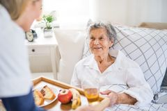 A health visitor bringing breakfast to a sick senior woman lying in bed at home. An unrecognizable young health visitor bringing breakfast to a sick senior royalty free stock photos