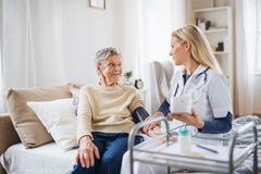 A health visitor measuring a blood pressure of a senior woman at home. A young health visitor measuring a blood pressure of a senior women at home royalty free stock photo