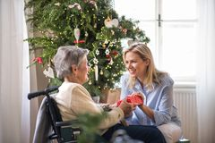 Health visitor and senior woman in wheelchair with a present at home at Christmas. A health visitor and a senior women in wheelchair with a present at home at royalty free stock images