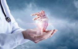 Health worker shows a donor heart . Health worker shows a donor heart in the sky stock image