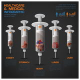 Healthcare And Medical Infographic With Syringe Of Human Organ D Stock Images