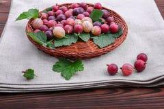 Healthful agrestów różni cienie jaskrawy czerwony kolor z liśćmi w koszu na szarej torbie drewnianym tle i Fotografia Stock