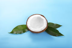 Healthful coconut cracked in half on a green leaves on a saturated blue background. Nutritious organic fruit. Vegan cooking. Royalty Free Stock Image