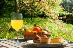 Healthful frukost i fältet royaltyfri bild