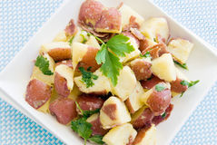 Healthful potato salad Royalty Free Stock Photos
