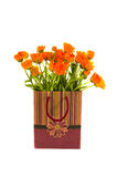 Healthly calendula flowers gift bag on white Royalty Free Stock Images