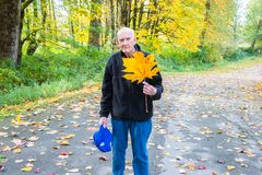 Healthy Active Senior Man Holding a Yellow Big Leaf Maple Leaf. Healthy Active Mature Man Holding a Yellow Big Leaf Maple Leaf while taking a walk on a hiking royalty free stock photos