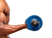 Healthy african american muscle man lifting gym weight. Close up portrait of a healthy african american muscle man lifting gym weight Stock Photos