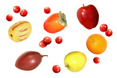 Healthy apple, orange, persimmon, cranberry, pepino, and tamarillo fruits collection isolated Royalty Free Stock Photography