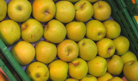 Healthy apples Royalty Free Stock Photos