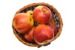 Healthy apples Stock Photography