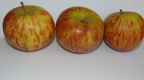 Healthy Apples. Close up of three red vain apples Stock Image