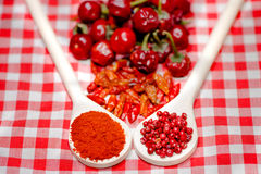 Healthy aromatic herbs with dried chili, red hot peppers stock photo