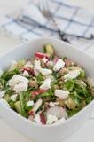 Healthy Arugula Salad with tuna Stock Photography