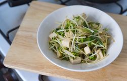 Healthy Asia Meal, stir fried bean sprouts with tofu Stock Photography