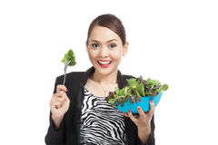 Healthy Asian business woman with salad Royalty Free Stock Images
