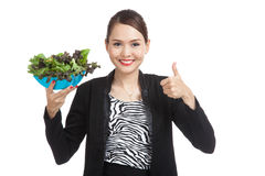 Healthy Asian business woman thumbs up with salad Stock Image