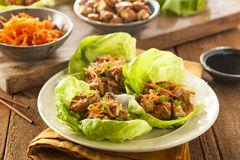 Healthy Asian Chicken Lettuce Wrap Royalty Free Stock Photo
