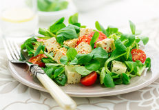 Healthy Asian style salad Royalty Free Stock Images