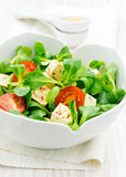 Healthy Asian style salad Royalty Free Stock Image