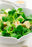 Healthy Asian style salad Stock Photography