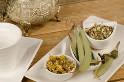 Healthy assorted herbs stock image