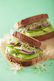 Healthy avocado sandwich with cucumber alfalfa sprouts onion Stock Image