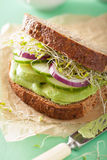 Healthy avocado sandwich with cucumber alfalfa sprouts onion Stock Photos