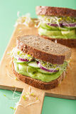 Healthy avocado sandwich with cucumber alfalfa sprouts onion Royalty Free Stock Image