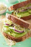 Healthy avocado sandwich with cucumber alfalfa sprouts onion Royalty Free Stock Photos
