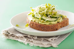 Healthy avocado toast with cucumber radish sprouts Royalty Free Stock Images