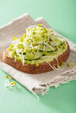 Healthy avocado toast with cucumber radish sprouts Royalty Free Stock Photos