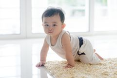 Healthy baby boy crawling on carpet. Royalty Free Stock Photography