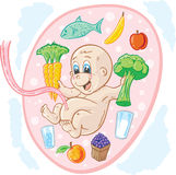 Healthy baby. Baby in tummy eating healthy food, part of a series stock illustration