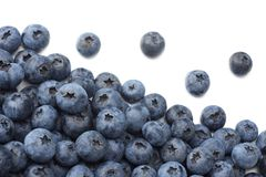 Healthy background. blueberries isolated on white background. top view stock photography