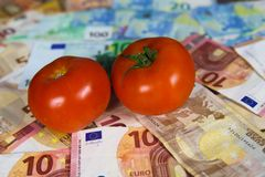 Healthy balanced nutrition cost concept - Two tomatos on euro paper money bank notes. Close up royalty free stock image