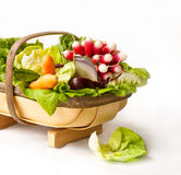Healthy basket Stock Photography
