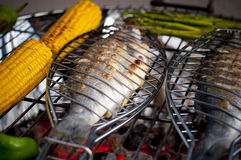 Healthy BBQ Royalty Free Stock Images